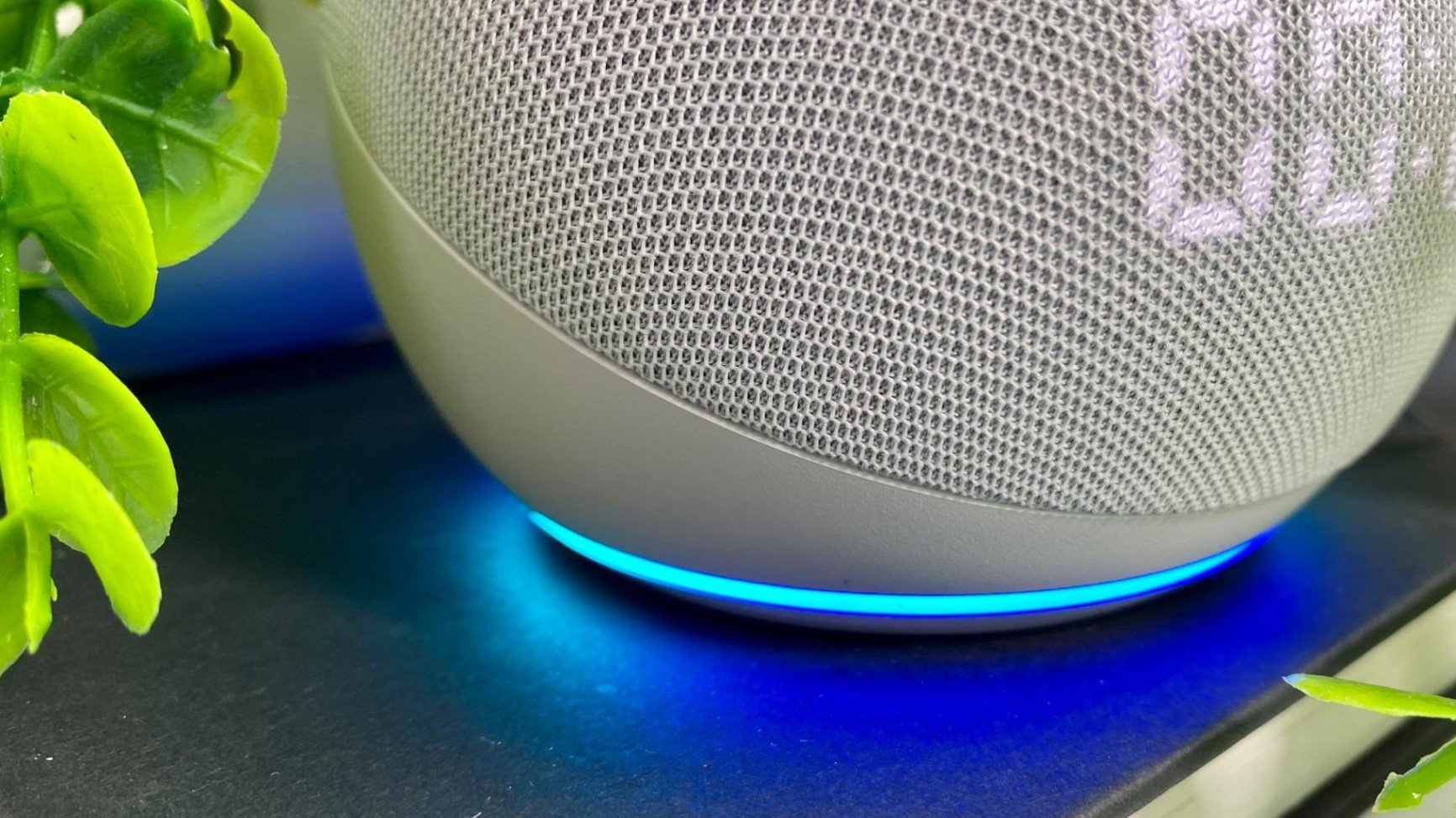 Learn About the Top Alexa Skills and Commands