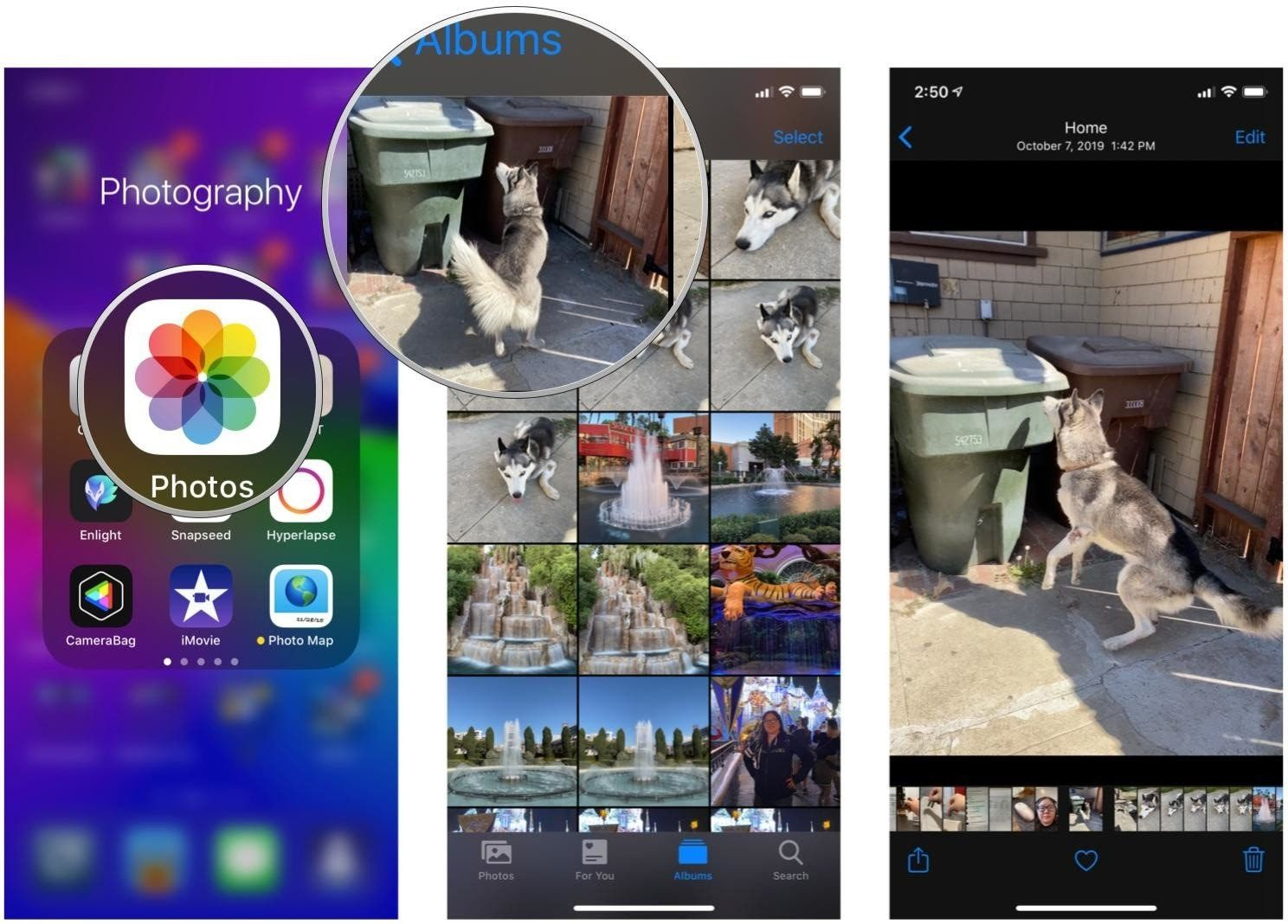 Live Photos - What Are the Best Apps to Edit Them